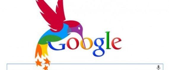 google-colibrì