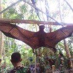 pipistrello-gigante