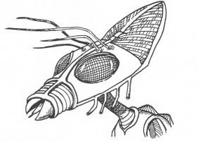 alieni-insettoidi