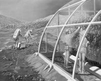 coltivare piante su altri pianeti