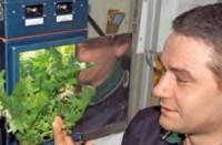 iss esperimenti piante