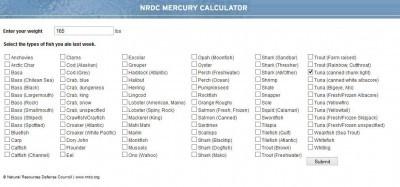 calcolatore mercurio-1