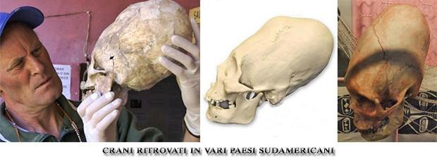 crani-allungati-sudamericani