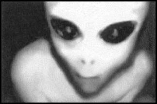 alieno grigio