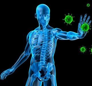 raffreddore-rinforzare-sistema-immunitario