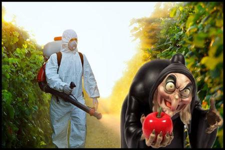 pesticidi-alimenti-e-salute